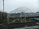 Теплица ЭКО - ТОП4  4х8 стандарт 10 мм, фото 7