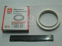Сальник хвостовика КАМАЗ правого вращения (176) (силикон.)  864176