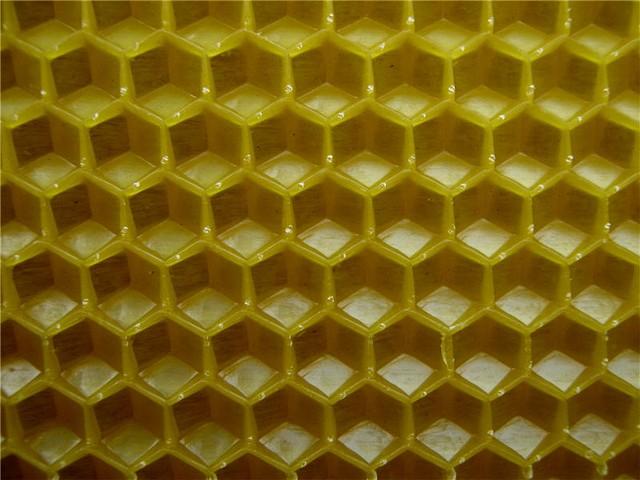 Основа будущих пчелиных сотов- Вощина