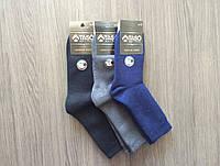 Носки мужские Taso шерстяные длинные