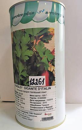 Петрушка листовая Гиганте де Италия (Франция), 500 г — ранний, всесезонный сорт листовой петрушки , фото 2