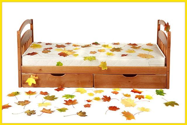 """Детская одноярусная кровать из дерева """"Карина"""""""