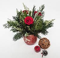 """Новогодняя композиция из стабилизированных растений от """"Artis Green"""""""