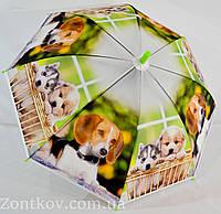 """Красочный детский зонт-трость с собачками фирмы """"FeelingRain""""."""