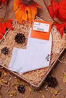 Носки мужские 3001 (2цв), носки мужские хлопок, мужские коттоновые носки