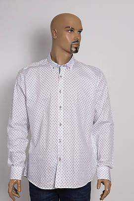Рубашка мужская Zen-Zen ZEN-ZEN 23215 BEYAZ