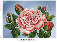 Схема для вышивания бисером Розовые розы (частичная зашивка)