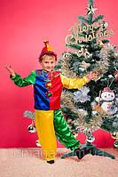 Новогодний карнавальный костюм Петрушка (037)