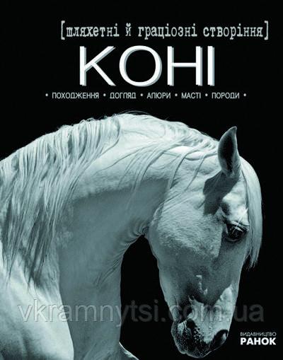 Шляхетні й граціозні створіння - коні