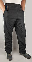 Штани чоловічі зимові - плащівка, фото 3