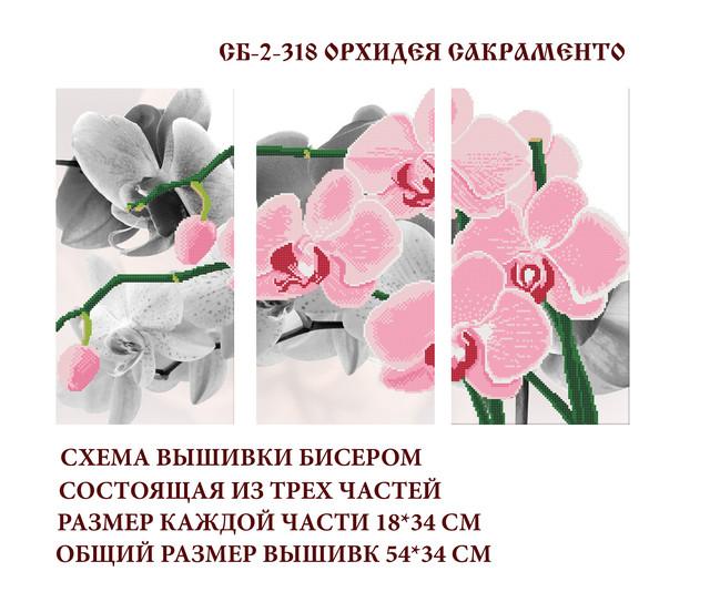 схема, бисер, атлас, орхидея, купить схему для вышивки, украина