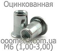 Заклепки резьбовые, клепальные гайки М6 (1,00-3,00) оцинкованные с цилиндрическим буртиком рифленые круглые