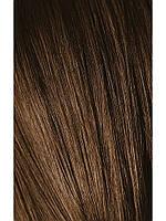 Краска для седых волос 6-50 Igora Royal Absolutes Темно-Русый золотистый натуральный 60 мл