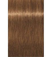 Краска для седых волос 7-450 Igora Royal Absolutes Средне-Русый Бежевый Золотой 60 мл