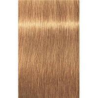 Краска для седых волос 9-50 Igora Royal Absolutes Экстра Светлый Блондин Золотистый Натуральный 60 мл