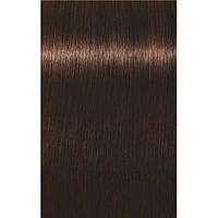 Краска для седых волос 4-60 Igora Royal Absolutes Средне-коричневый шоколадный 60 мл