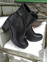 Ботильоны зимние на устойчивом каблуке. Натуральная кожа. 1590
