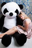 М'яка іграшка ведмедик Панда 200 см