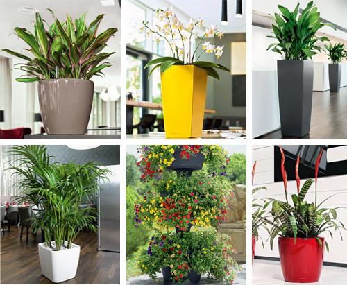 Кашпо для орхидей, вазоны цветочные и рассадные, вазы, лейки для цветов,подвесные вазоны и другое