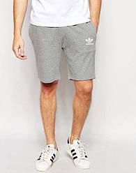 Мужской спортивный шорты Adidas серого цвета