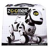 Интерактивная робособака  Zoomer, фото 6