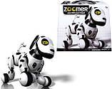 Интерактивная робособака  Zoomer, фото 7