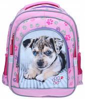 Ранец рюкзак  школьный ортопедический CLASS 9739