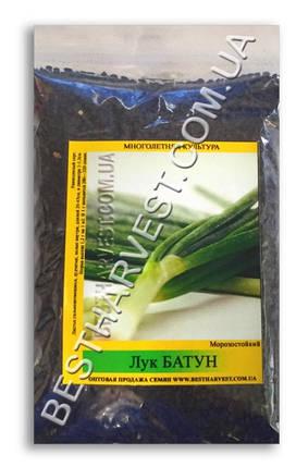 Семена лука «Батун» 100 г, фото 2
