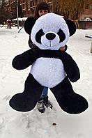 М'яка іграшка ведмедик Панда 160 см