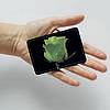 Картхолдер v.1.0. Fisher Gifts  265 Зеленая роза (эко-кожа), фото 3