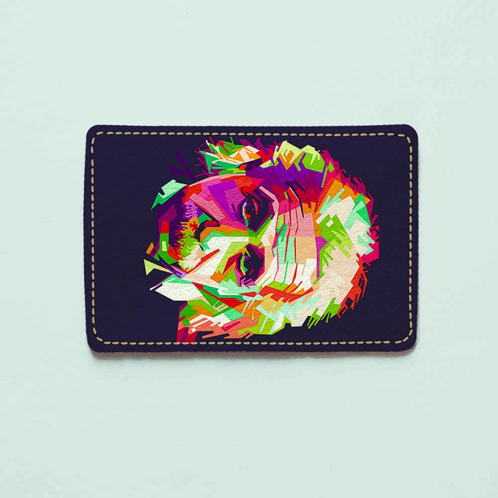 Обложка для id паспорта, карты, автодокументов 1.0 Fisher Gifts  319 Разноцветный Альберт Эйнштейн (эко-кожа)