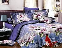 Комплект постельного белья R2037 полуторный (TAG(1,5-sp)-496)
