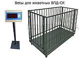Весы для взвешивания животных ВПД-СК-1520-0,5 до 500 кг, фото 2