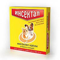 ИНСЕКТАЛ капли от блох и клещей для кошек и маленьких собак весом от 2 до 4 кг