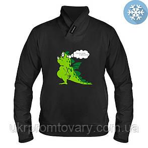 Толстовка утепленная - Дракон Тоад, отличный подарок купить со скидкой, недорого, фото 2