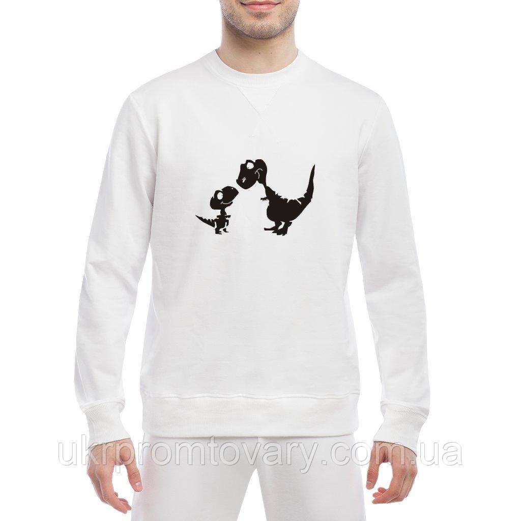 Свитшот мужской - Семья динозавров, отличный подарок купить со скидкой, недорого