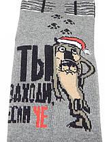 Носки мужские Montabello новогодние, фото 3