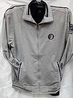 Костюм мужской спортивный Fabiani серый с черной отделкой  и надписями