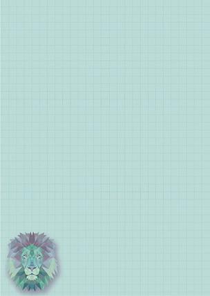 """Блокнот """"Profiplan"""" A5 №900022 клетка 80 страниц, фото 2"""
