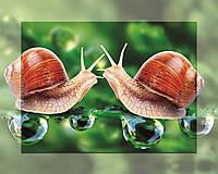 Картина на стекле с МДФ подложкой Влюбленные Улитки