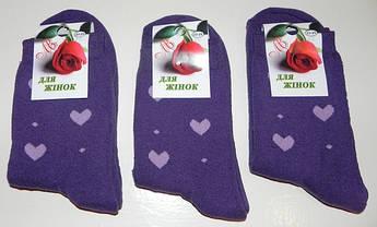 Носки женские махра зимние ТМ Прилуки 10,5 грн, фото 2