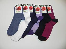 Носки женские гладкие однотонные ТМ Прилуки, фото 3