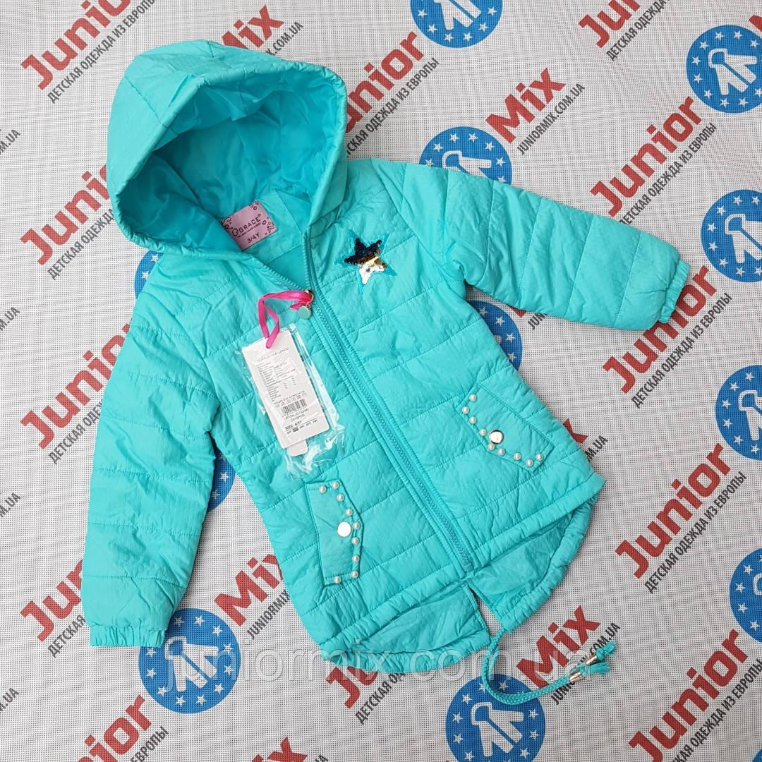 Детская демисезонная куртка для девочек оптом GRACE, фото 1