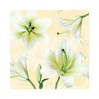 """Салфетка 33х33см (20шт) """"Белые лилии"""" кремовый"""