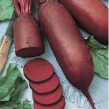 Семена свеклы  Атаман 1 кг