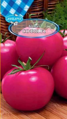 Насіння томату Софія F1 (кущовий), 20 шт.