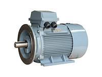 Перемотка электродвигателей Inter Motor