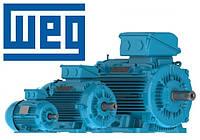 Перемотка электродвигателей WEG
