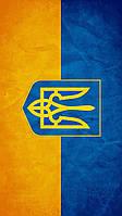 Виниловая наклейка на телефон S Флаг Украины