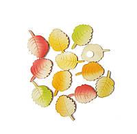 Листья дуба листочки осенние деревянные липучки декоративные из дерева 4x2.8 см 12 шт/уп